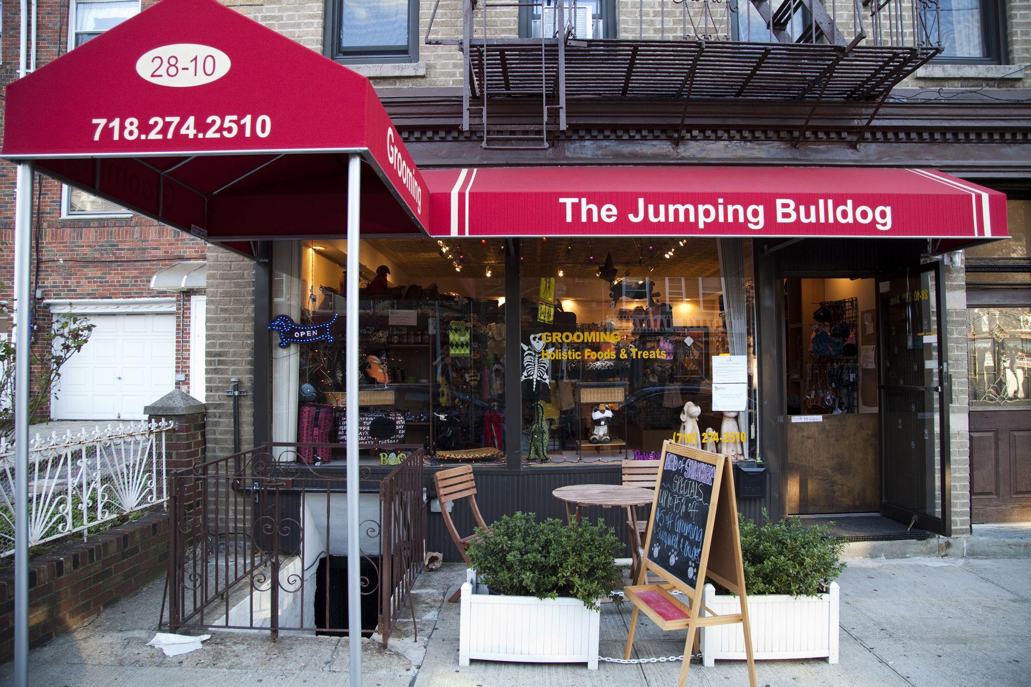 The Jumping Bulldog Pet Store City Pets Pets