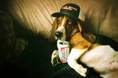 Just havin a beer