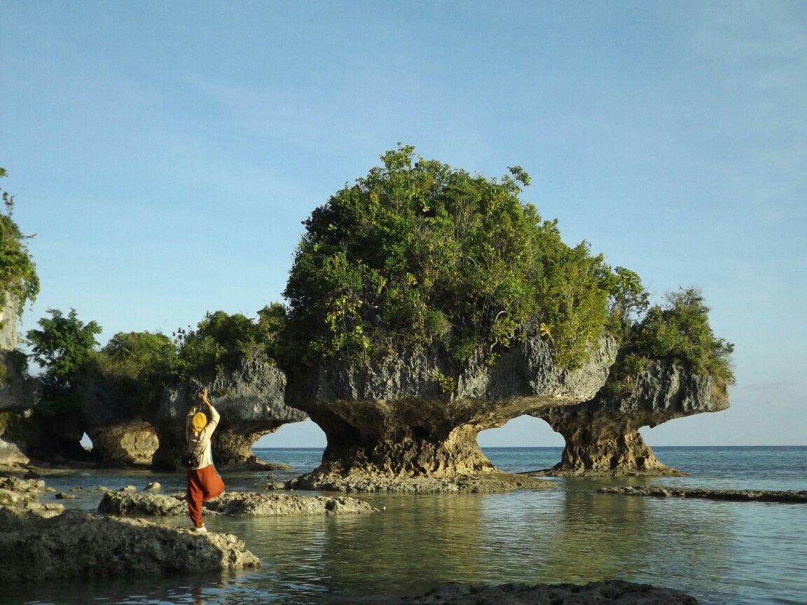 Buton Island