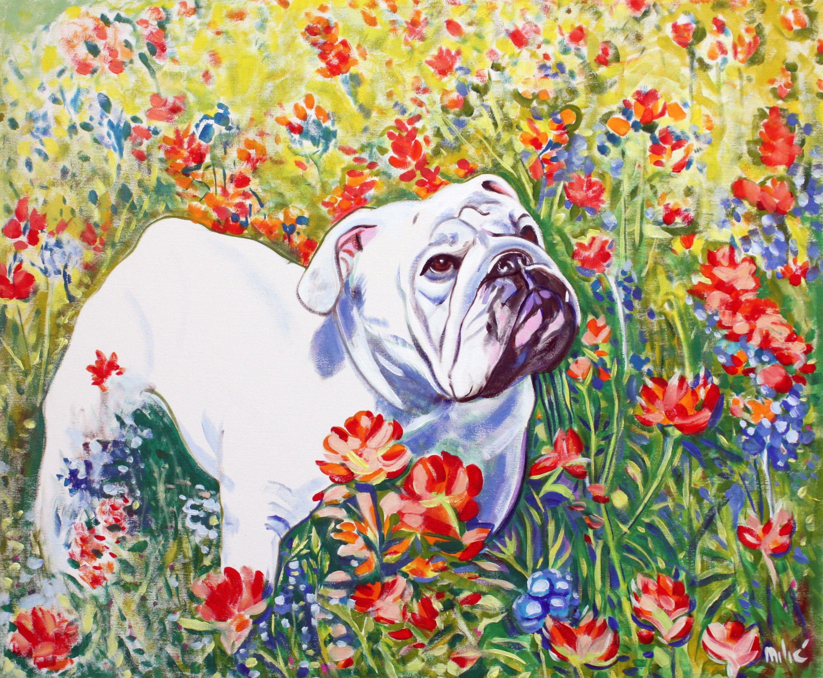 "36x30"" oil on canvas by dragoslav milic Bulldog art, Dog"