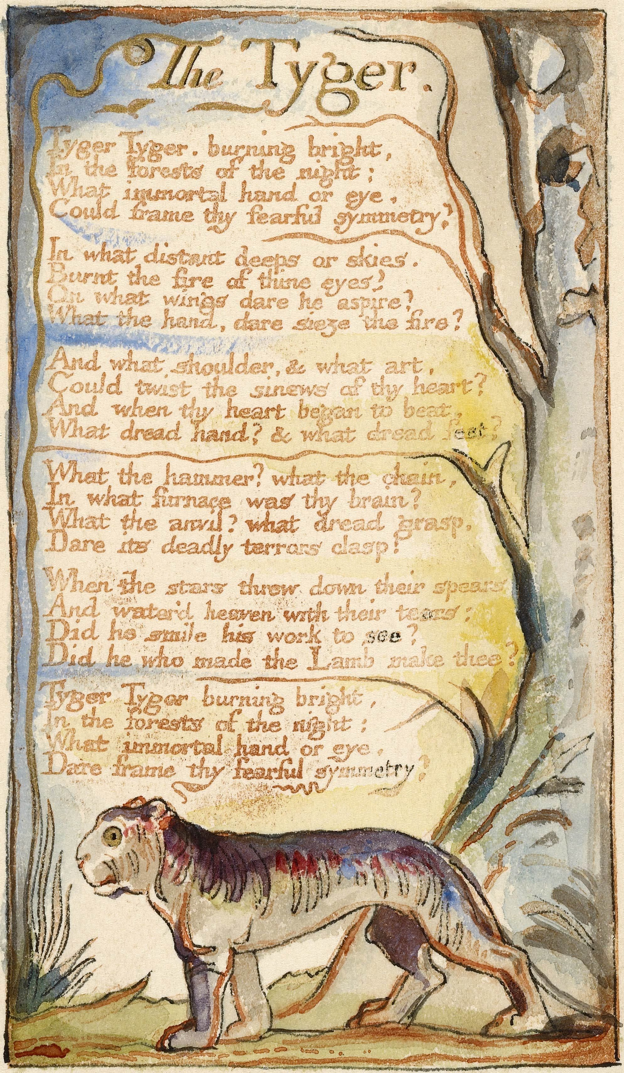 essay william blake tyger Get an answer for 'compare the poems the lamb and the tyger by william blake' and find homework help for other the tyger questions at enotes.
