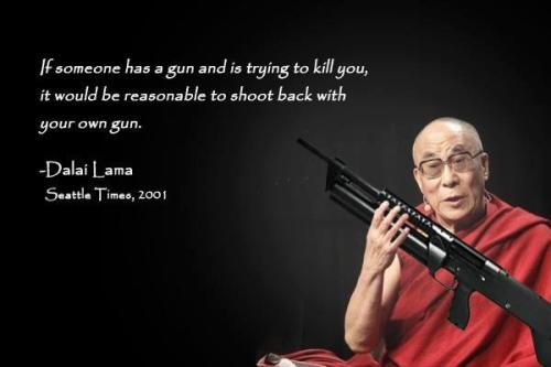 Gun Control Quotes Adorable 82847Dalailamaquoteguncontrol 500×333  Twin Flames . Design Inspiration