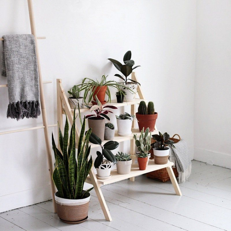 Meuble Plante Interieur