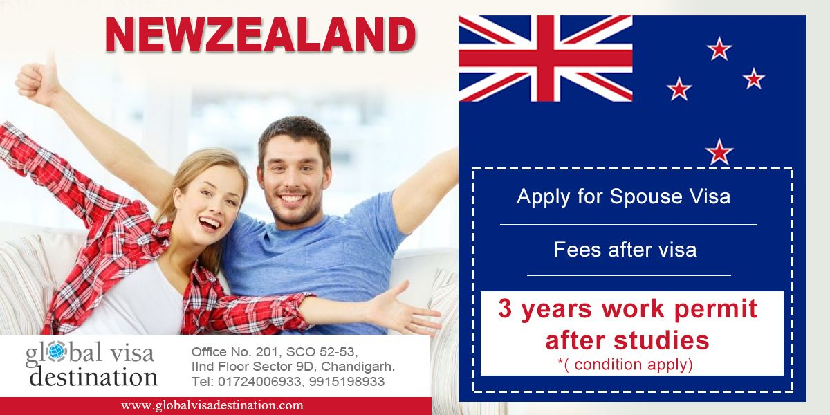 Image result for study visa new zealand image