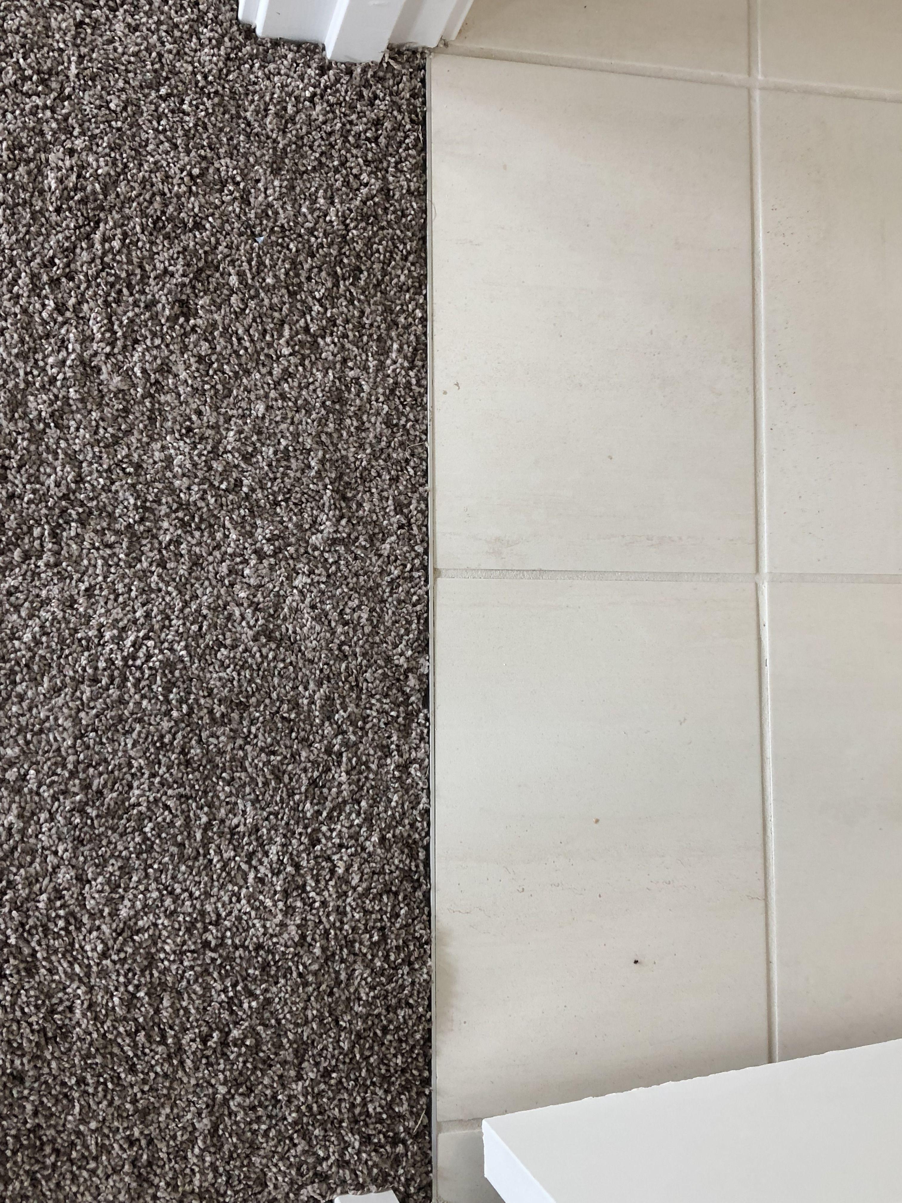 TRANSITION STRIP BETWEEN TILE AND CARPET Carpet to tile