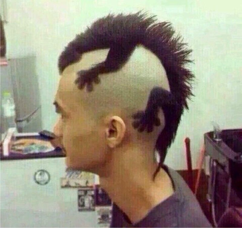 Punk Hairstyles For Men Lizard On Head Comparing Punk Hairstyles For