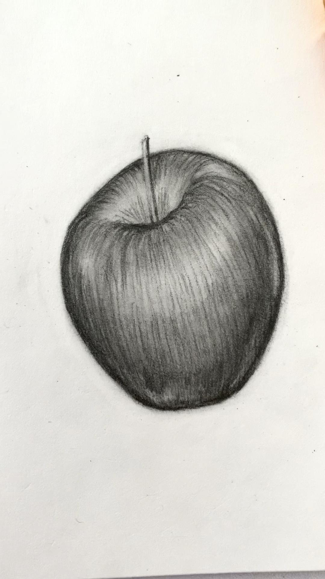 Apple Sketch Drawing