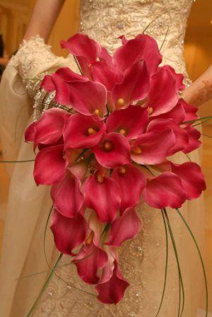 Cascading calla lily bouquet