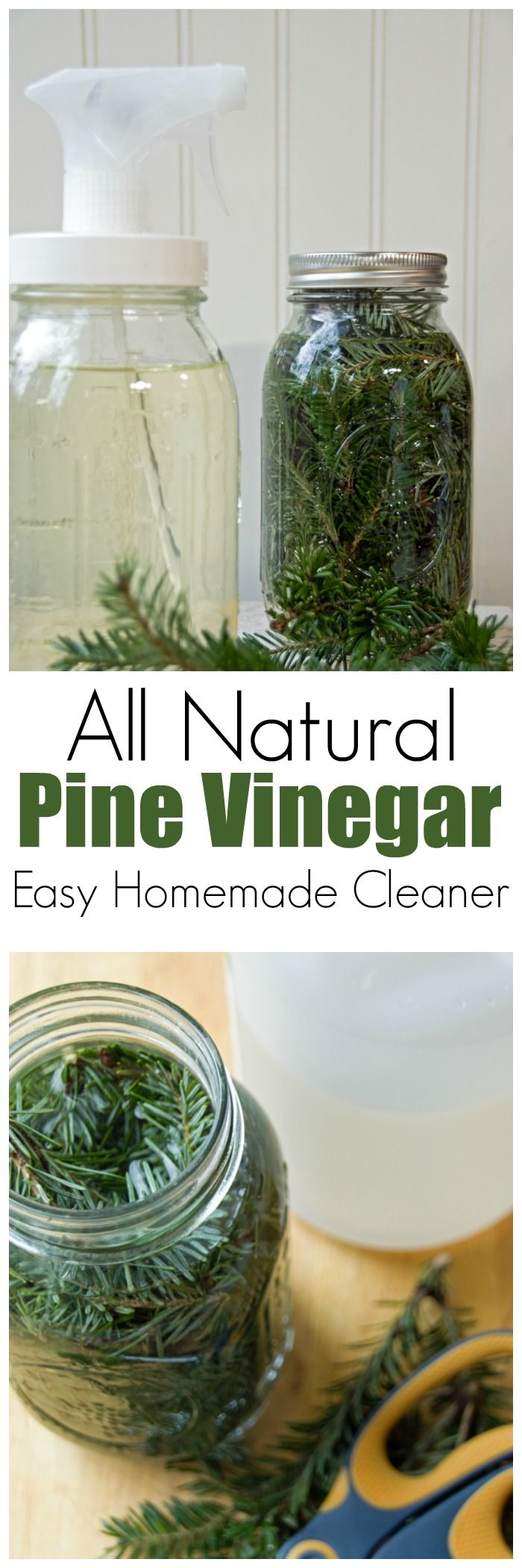 Pine Vinegar Homemade Kitchen Cleaner | Vinegar, Pine and Homemade ...