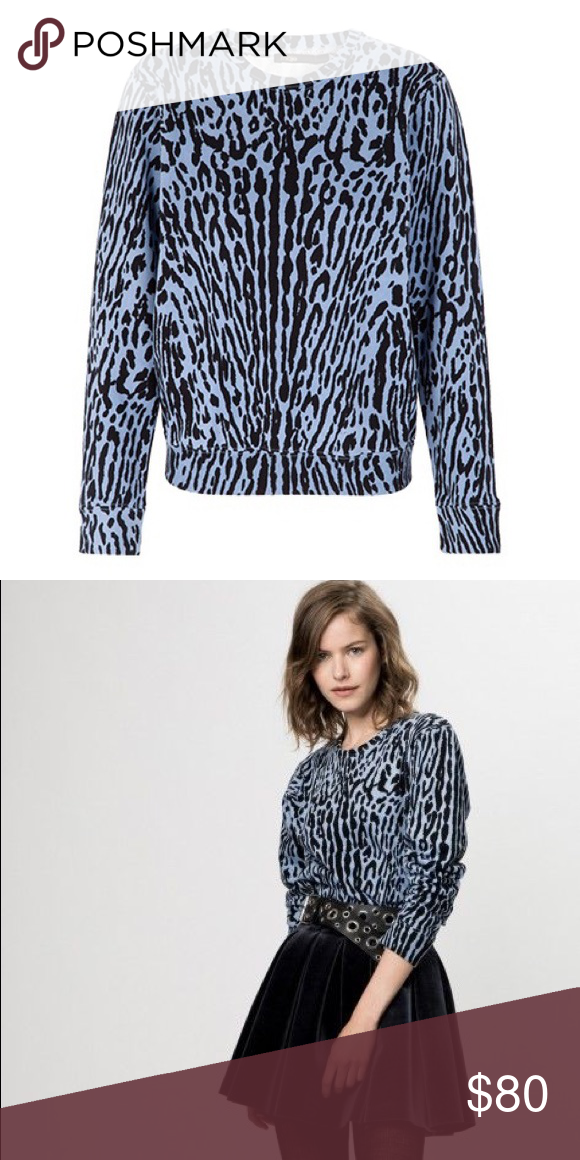 833113facc198 Maje Karjin Leopard Print Cotton Terry Sweater Preowned excellent condition  Maje light blue and black karijn sweater 100% Cotton Size 1   XS H14KARIJN  Maje ...
