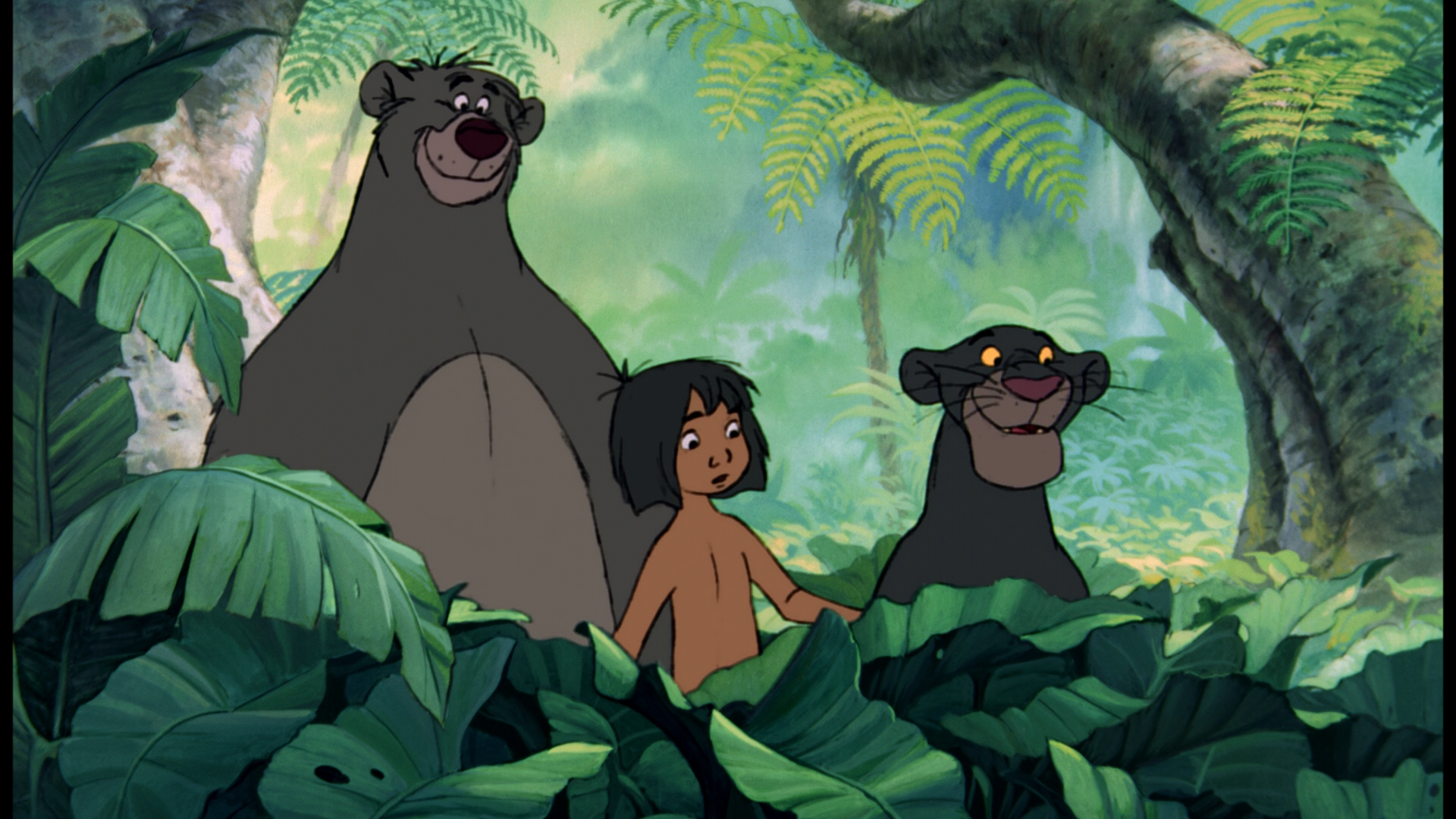 We Compare The Cast Of Disney S The Jungle Book With That Of Jungle Book Origins The Other Jungle Book Adap Disney Dschungelbuch Dschungelbuch Disney Spruche