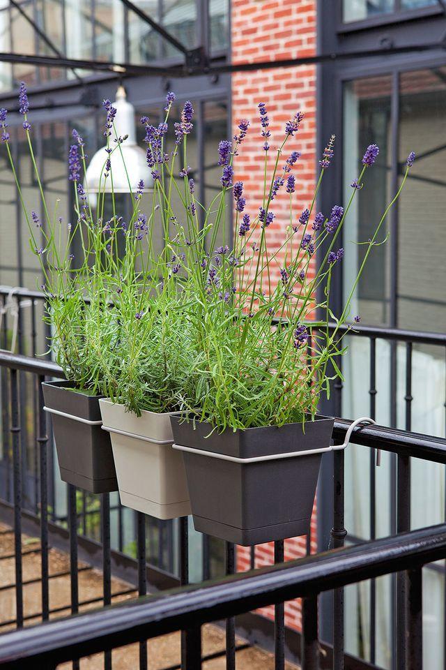 Am nager un balcon avec des plantes et une table truffaut jardini res et balcons - Truffaut jardiniere ...
