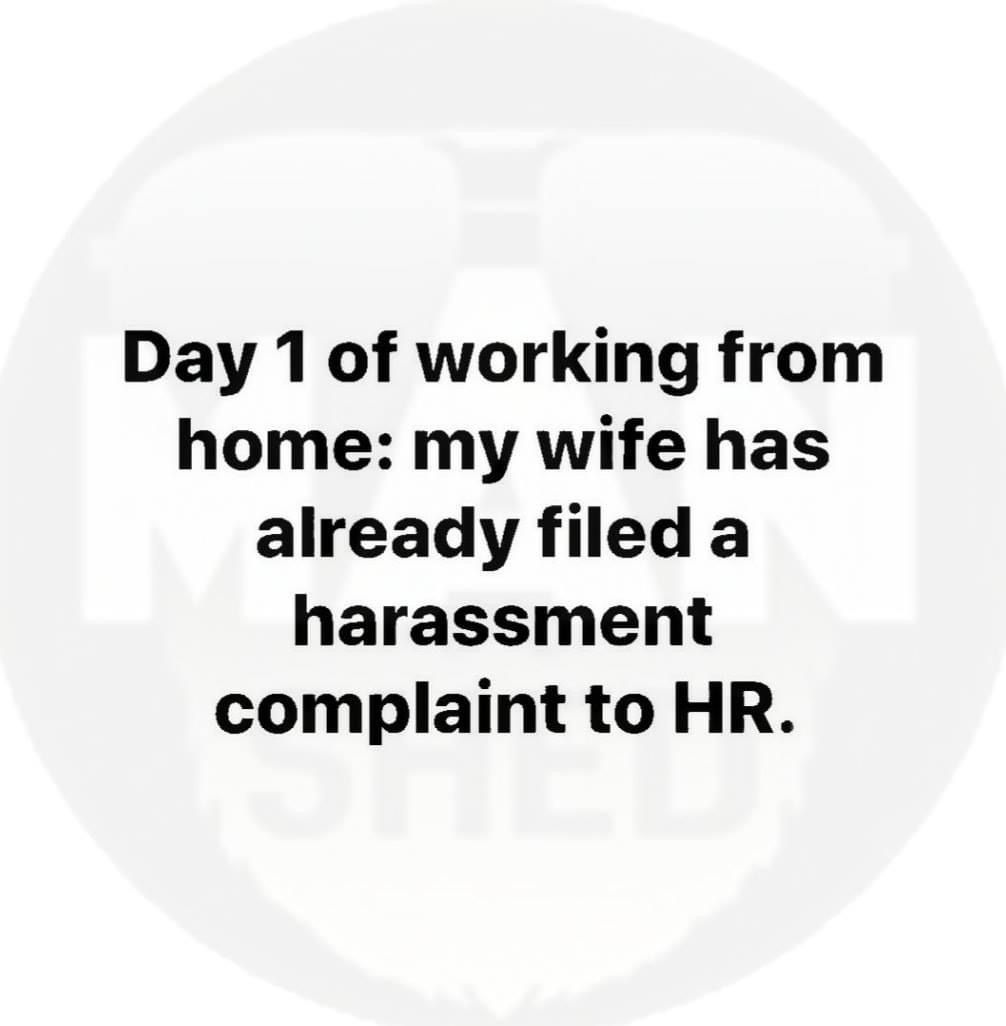 Working At Home British Humor Funny Quotes Humor