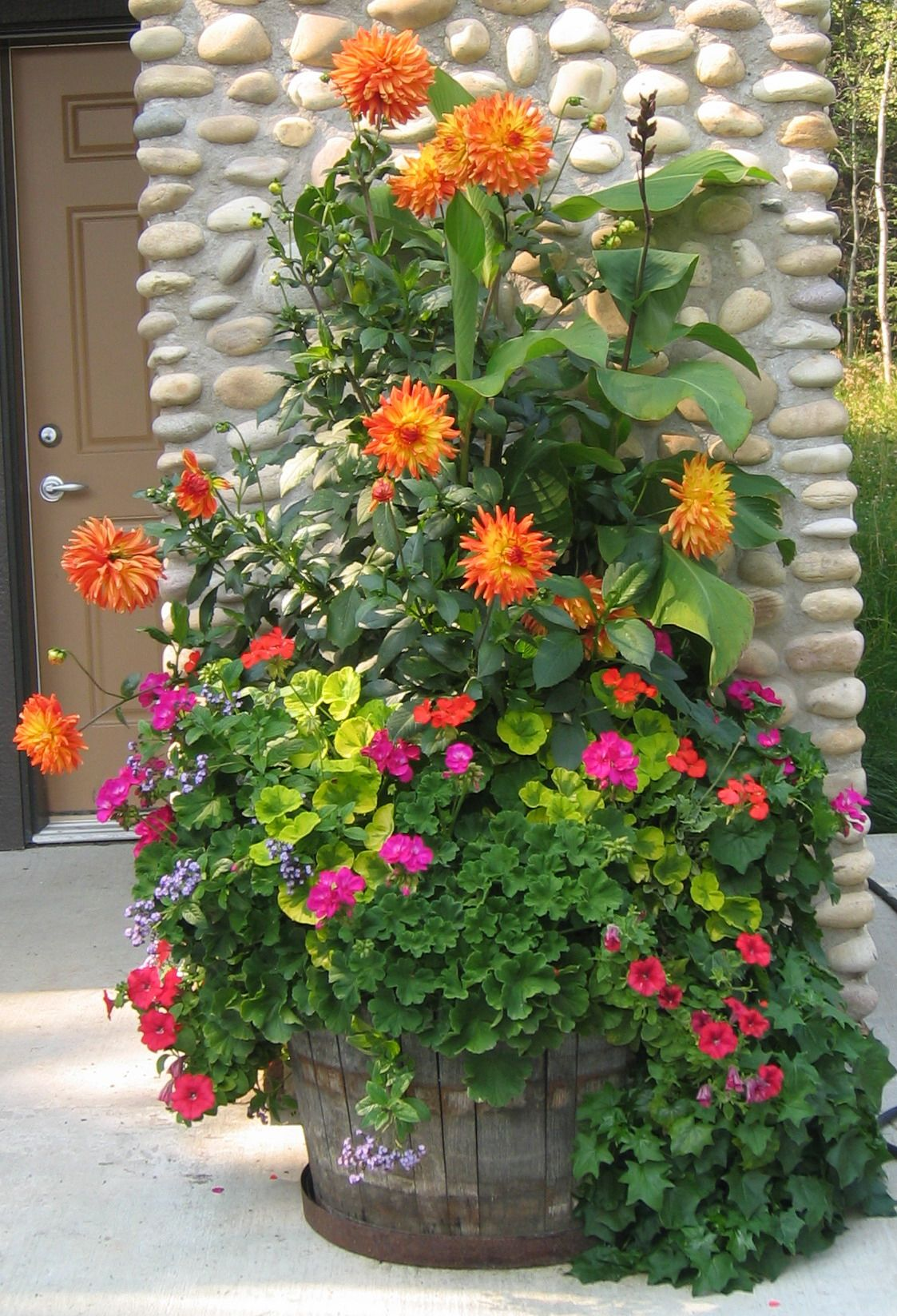 Summer planter with dahlias geraniums etc like all the for Container garden ideas