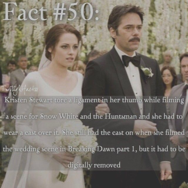 """2 Synes godt om, 1 kommentarer – Twilight Facts (@twilightfactss) på Instagram: """"~ QOTD: Which do you like better? Snow White and the Seven Dwarfs or Snow White and the Huntsman -…"""""""