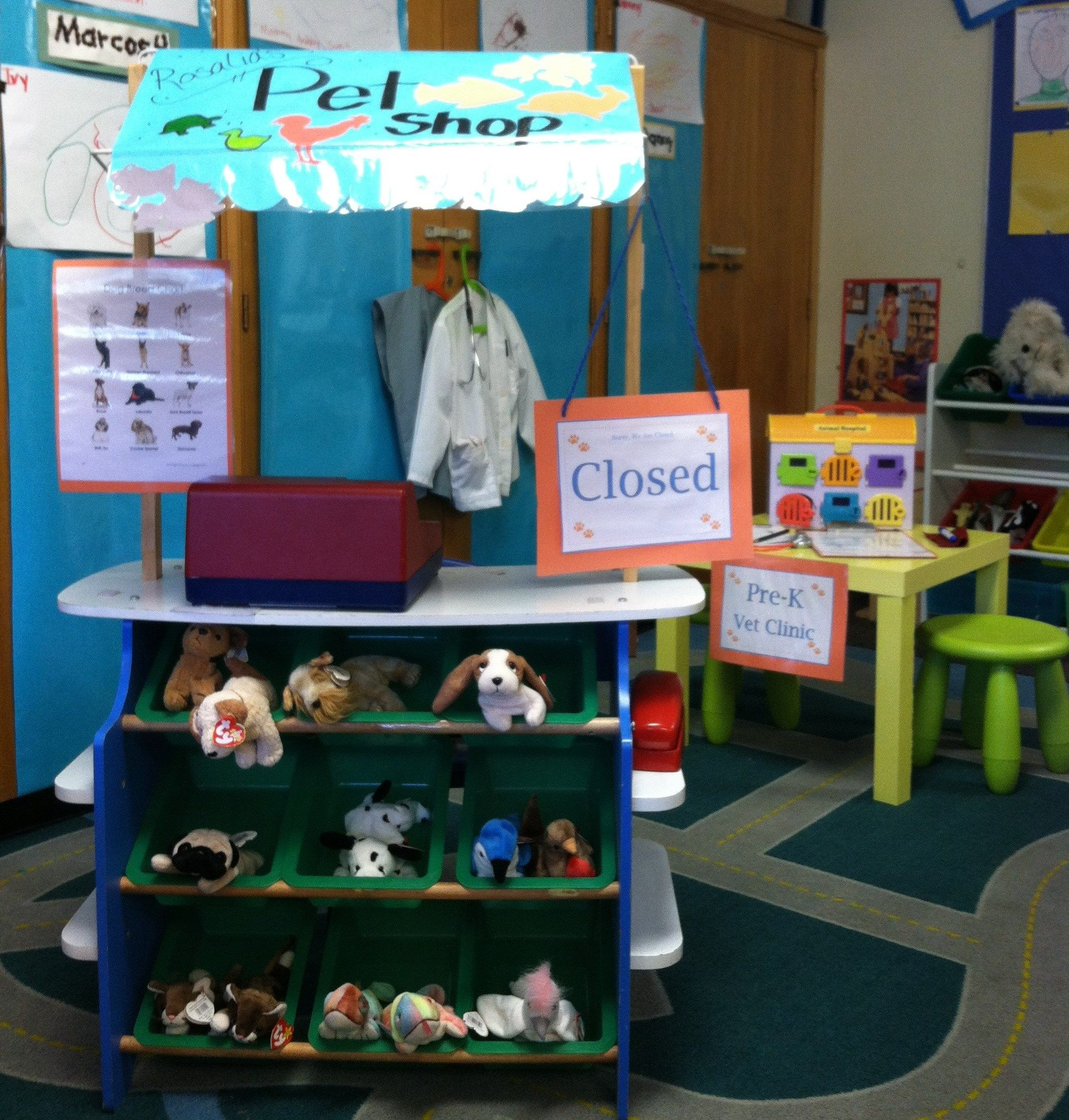 Pretend Play Center Pet shop with beanie babies as pets