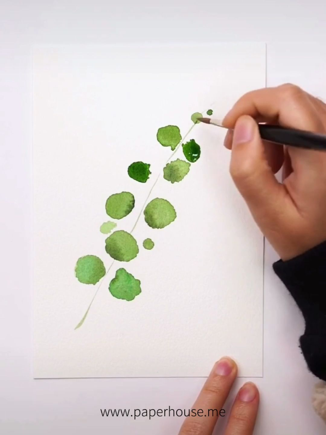 How To Paint This Plants Doodle Shop The Watercolor Essential At