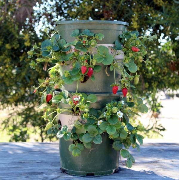 strawberry-tower-apieceofrainbowblog-26