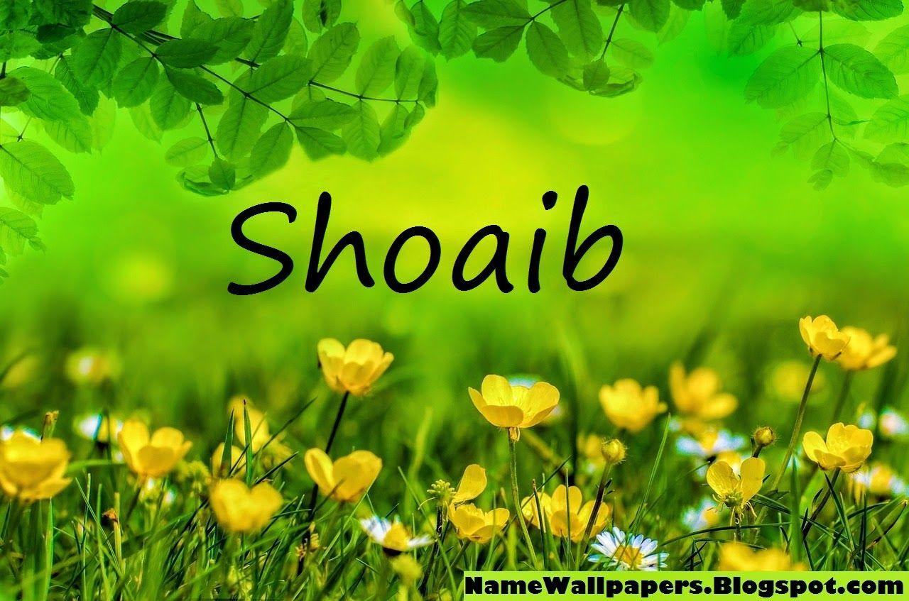 Shoaib Name Wallpapers Shoaib ~ Name Wallpaper Urdu Name