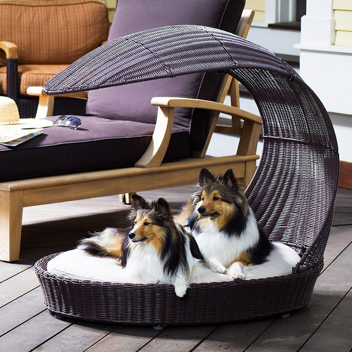 Wicker Pet Bed With Arched Canopy Better Than My Daybed Dog Chaise Lounge Outdoor Dog Outdoor Dog Bed
