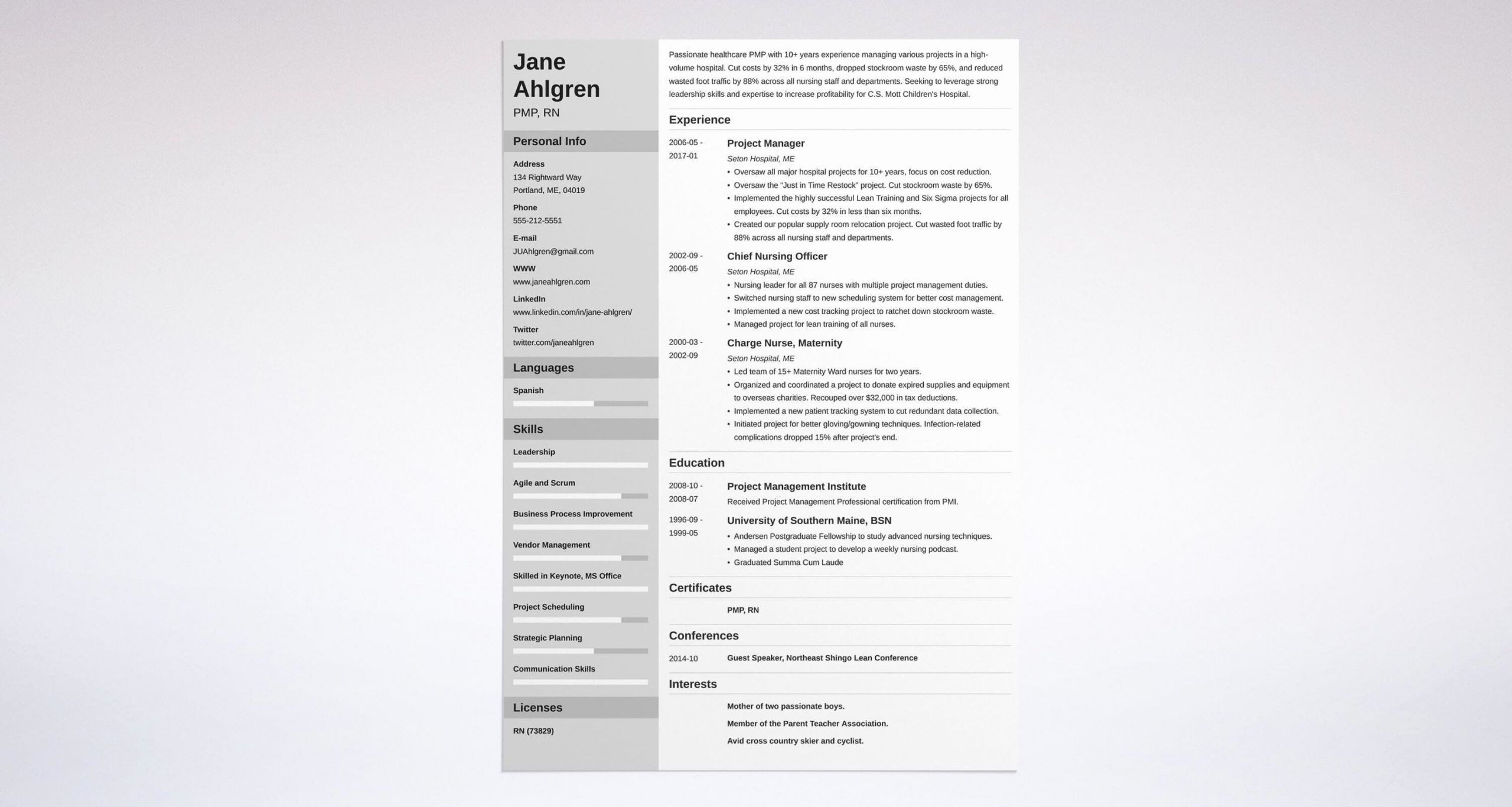 Project Manager Resume Sample Doc Inspirational Project