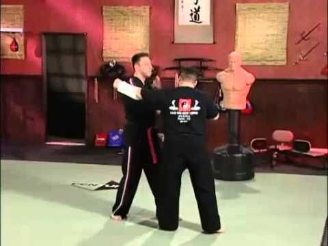 Scott Rogers Volume 4: Pressure Point Knockouts: Moving Attacks with Sparring part 1 - YouTube