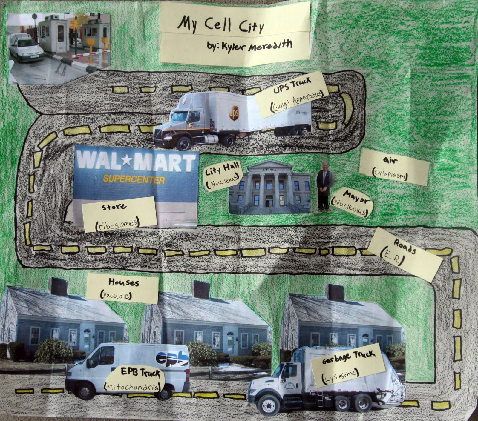 Cell City Project An Analogy Of The Parts Of The Cell Kyler Compared A Cell To A City I Cell City Cell City Project Cells Project