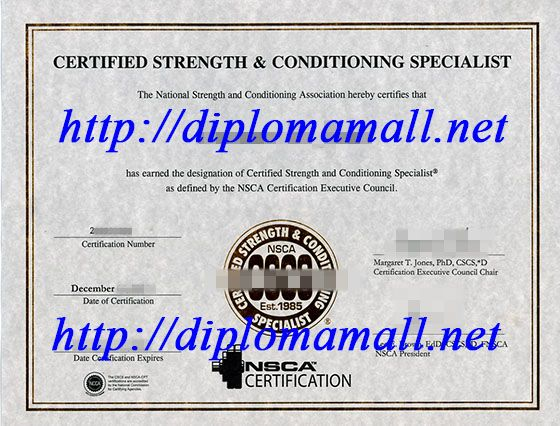 Cscs certificate in usa buy degree buy masters degree buy cscs certificate in usa buy degree buy masters degree buy bachelor degree yelopaper Gallery