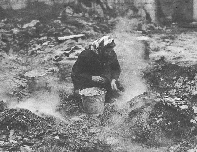 BELGIAN WOMAN SALVAGING GRAIN IN GUTTED BARN