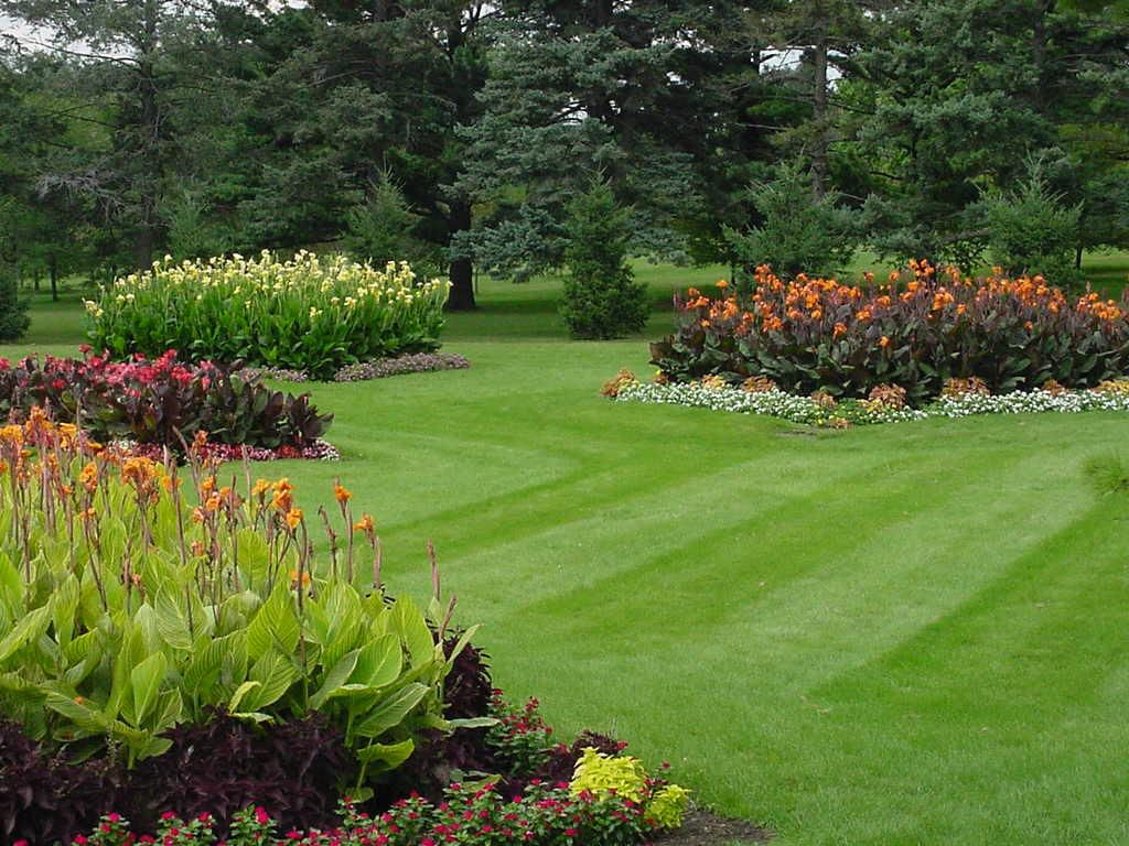 Lawn And Garden Ideas innovative lawn and garden ideas easy garden border ideas Large Lawn With Garden Beds