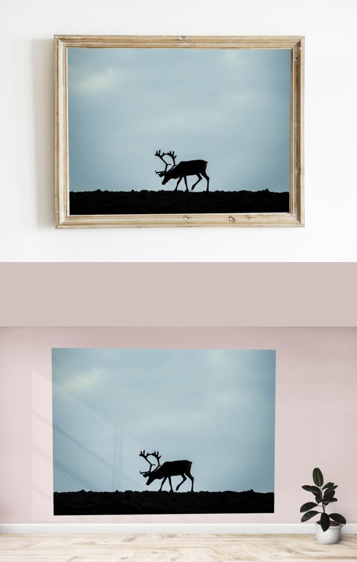 Elk Wall Art Home Gallery High Quality Photo Wall Etsy Wall Art Photo Wall Hanging Photo Wall