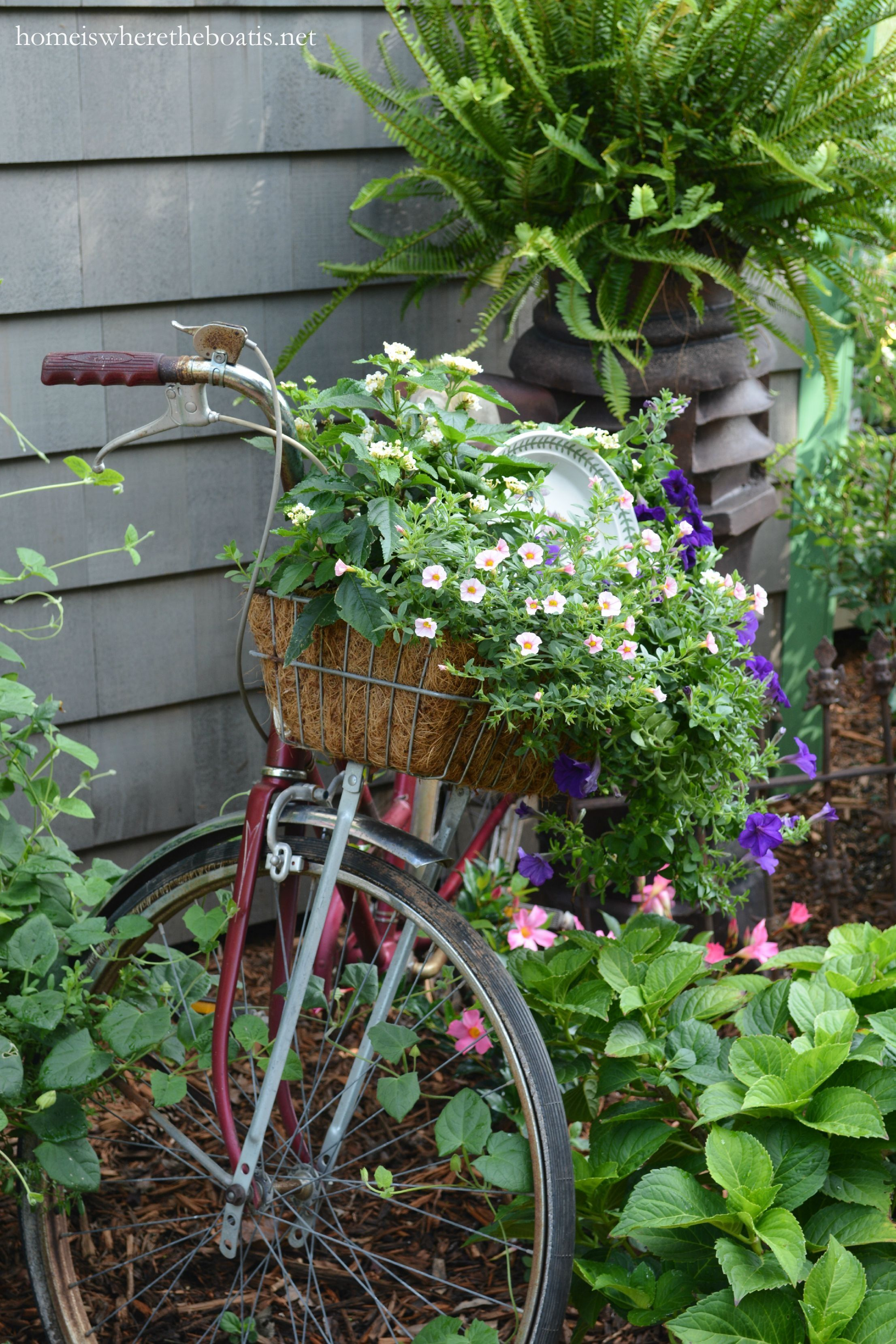 Gardening On Wheels: A Bicycle Planter | Homeiswheretheboatis.net