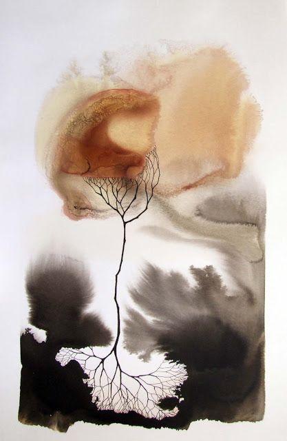 Pablo S. Herrero: Exhibitions