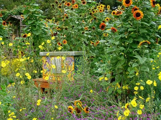 The Melissa Garden. It Is A Place Where The Buzzing Of Bees Is Tangible,