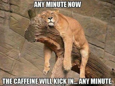 90+ Funny Monday Coffee Meme & Images to Make You Laugh