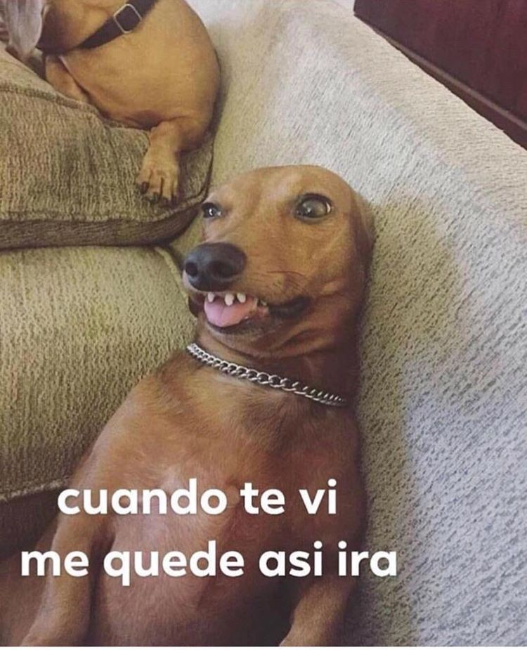 Love Memes For Her In Spanish