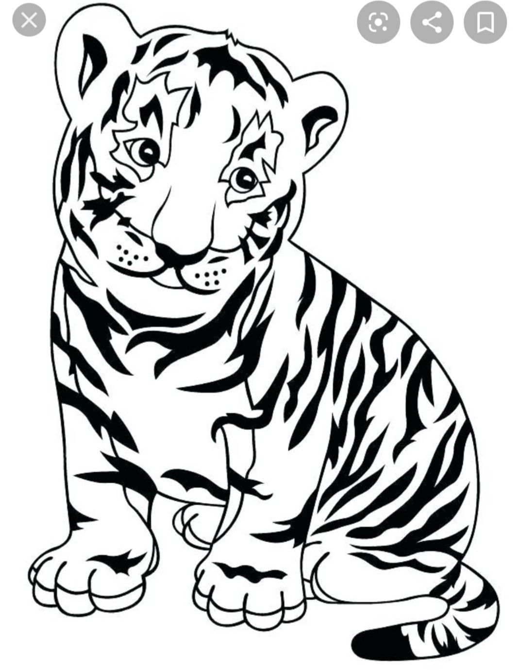 Pin By Shay Silvia On Granny Animal Coloring Pages Cartoon Tiger Birthday Coloring Pages