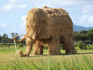 "Rice Straw Mammoth, via jocundist: ""straw art matsuri in niigata prefecture -- ...how Japanese celebrate after their harvest."" Click through for more information and photos."