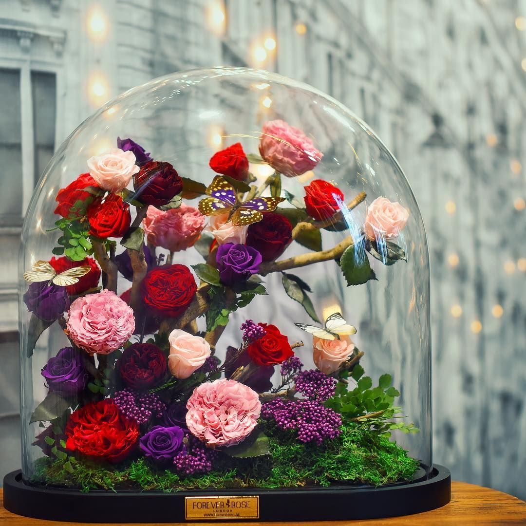 These Real Enchanted Roses Will Last 3 Years Forever Rose Flowers