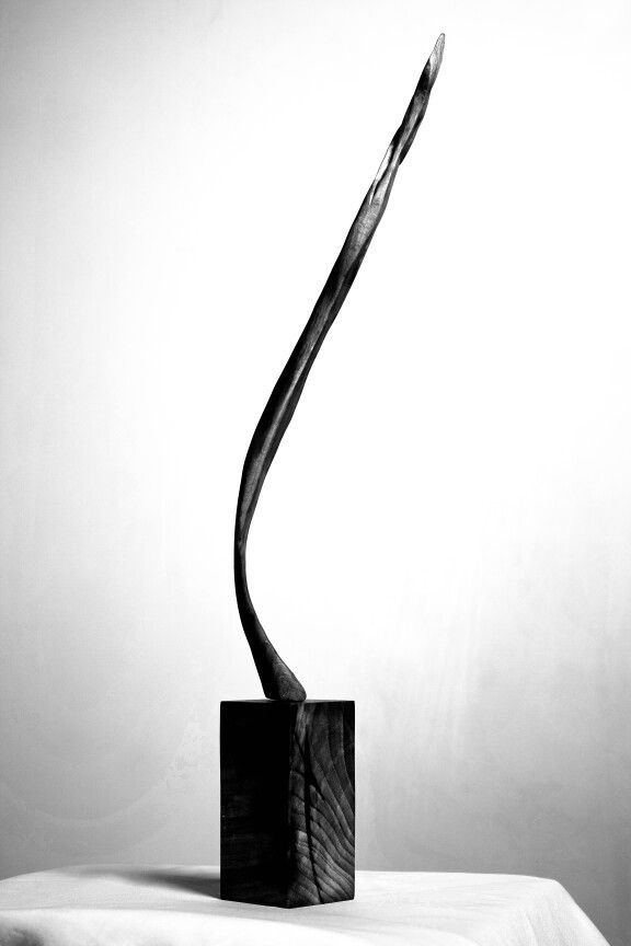 Wood sculpture by soroush