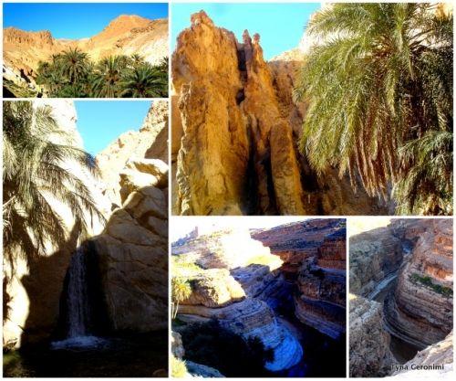 oasis, montagne, tunisie, Chebika, Tamerza, Mides  My photos