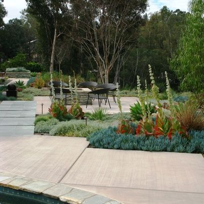 Succulent Garden Pool Design Ideas, Pictures, Remodel, and Decor