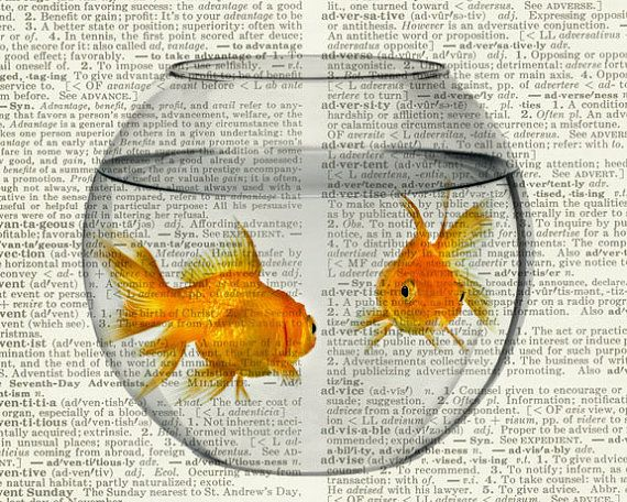 Goldfish Bowl Print Gold Fish In A Bowl On Vintage Dictionary Page Vintage Dictionary Art Print Wall Art Prints Goldfish Art Goldfish Bowl Watercolor Fish