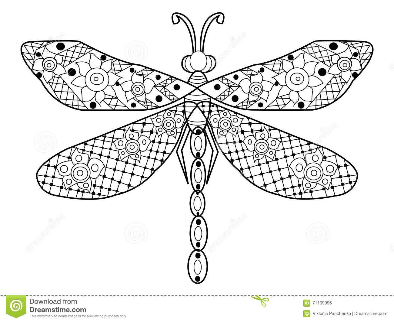 Dragonfly Coloring Vector For Adults Spring Coloring Pages