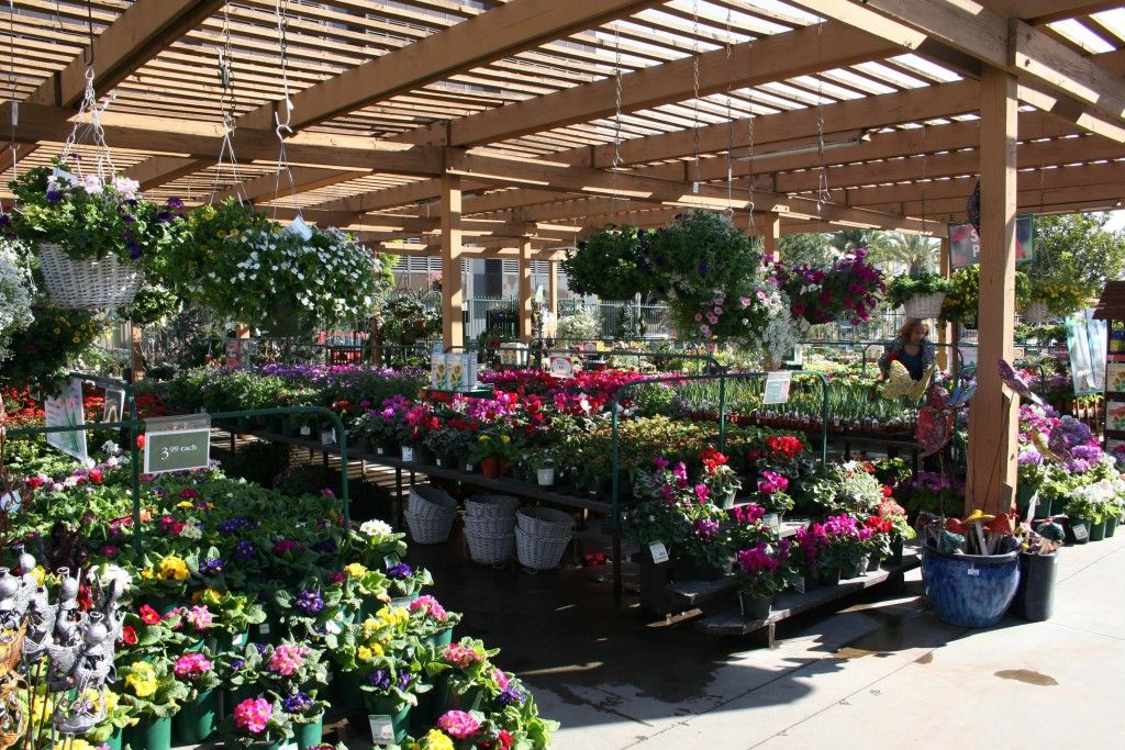 Home Gardens Armstrong Garden Centers Santa Monica Los Angeles Ca Best 30 Home Garden Nursery Ideas 15 Garden Nursery Garden Center Santa Monica Los Angeles