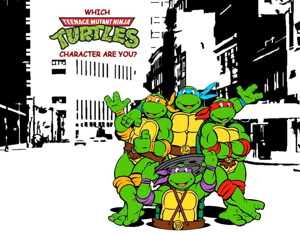 Which Teenage Mutant Ninja Turtle Character Are You Teenage Mutant Ninja Teenage Mutant Ninja Turtles