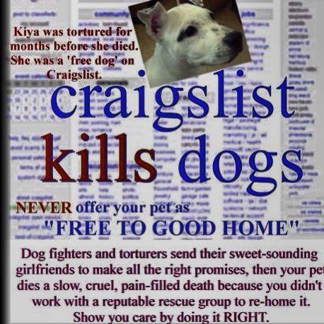 Craigslist Kills Dogs Never Use Craigslist To Re Home Any Animal Pets Cruel Animal Abuse