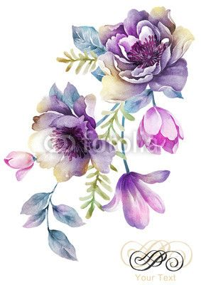 Watercolor Illustration Flowers In Simple Background Watercolor