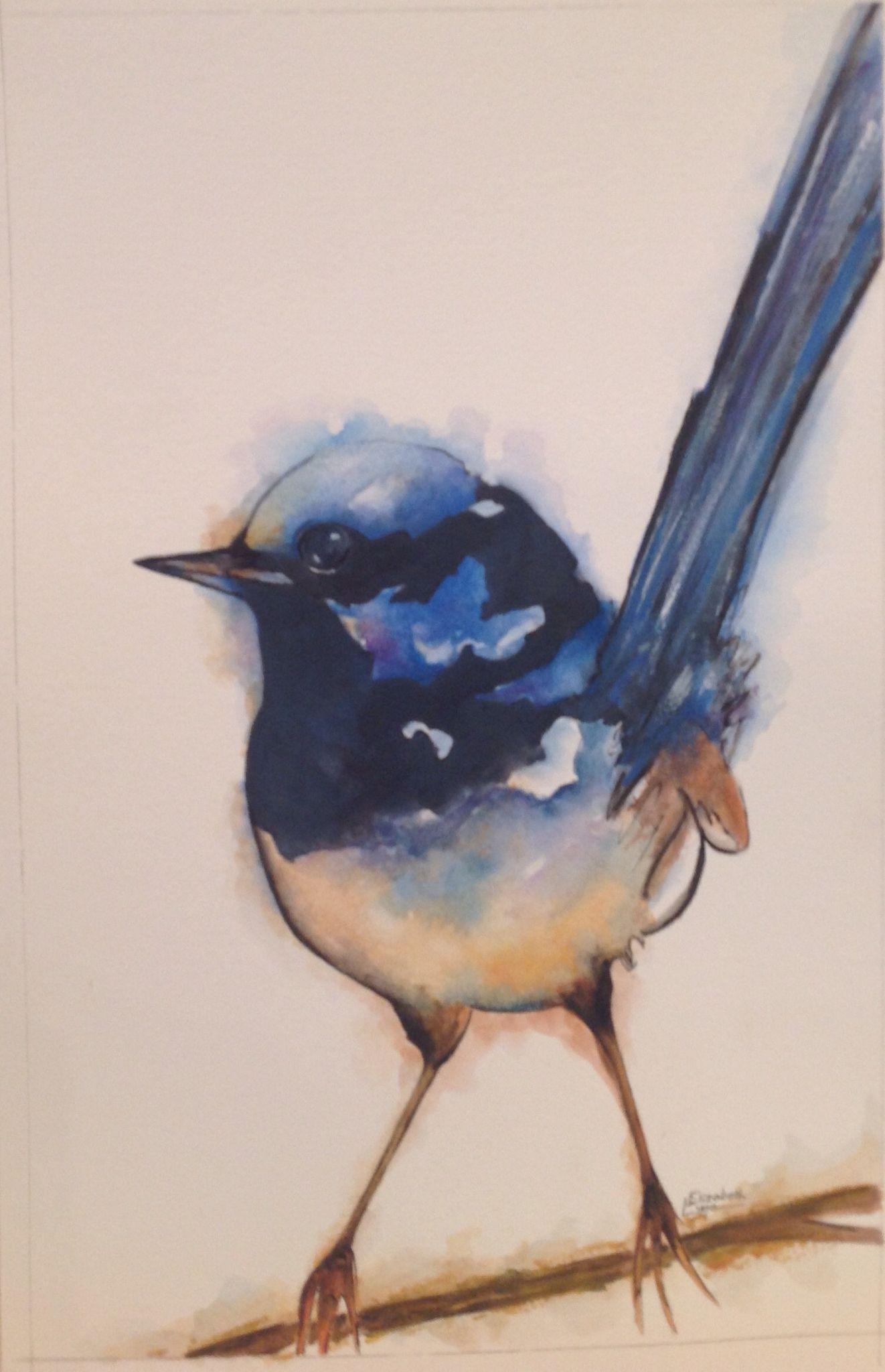 Superb Blue Wren Watercolour Watercolor Bird Birds Bird Art