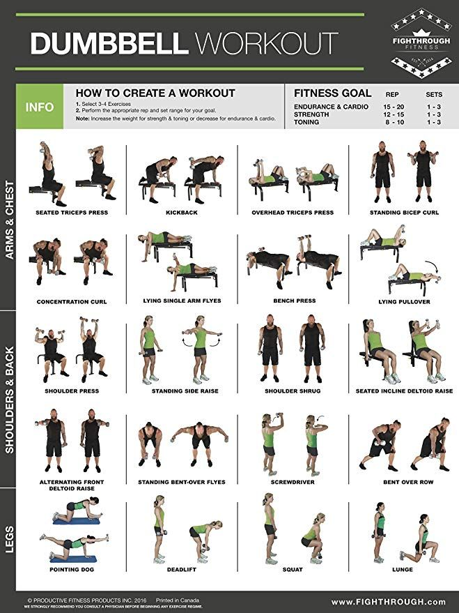 Dumbbell Exercises Laminated Poster Chart - Streng